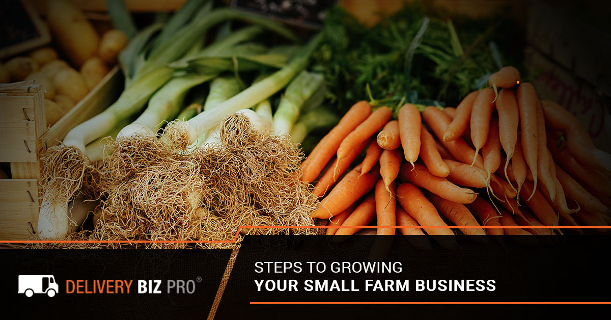 Steps To Growing Your Small Farm Business